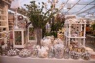 Drivstua blomster jul-21