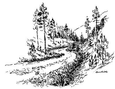 Landbruksvei
