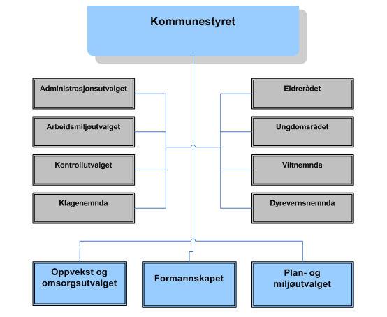 Organisasjonskart - Politisk