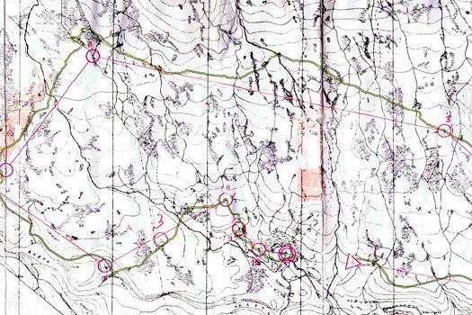 Brorparten av løypa under NM på Vang i 1952. Her med GPS-spor fra Vang-løperes gjennomløping i 2012.