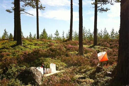 Illustrasjonsbilde fra Holleia Høstløp i regi av Viul OK - Kartlofferne. Foto: Geir Nilsen/OPN.no.