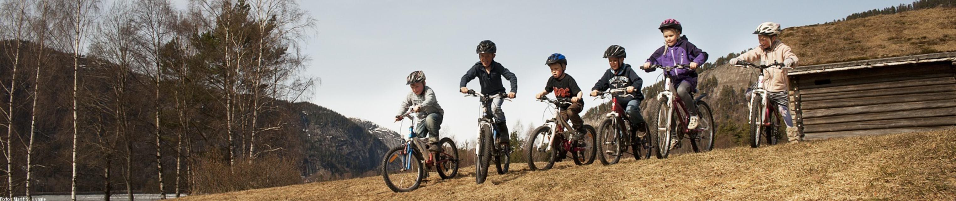 Unge syklistar