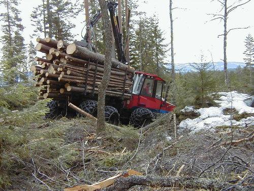 Tømmerdrift_500x375.jpg