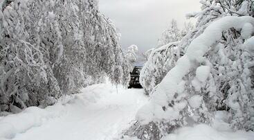 Tungt snøfall i Saurdalsvegen, foto jh
