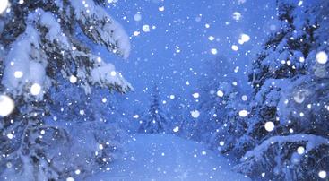Snøen laver ned før jul, foto Erik Hoel