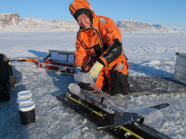 Agneta sea-ice sampling_photo Melissa Chierici IMR[1].JPG