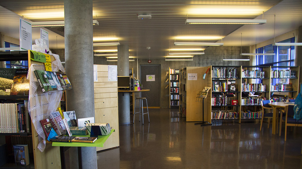 Bibliotek - Foto - Sunniva Grimstad Hestenes 3.jpg