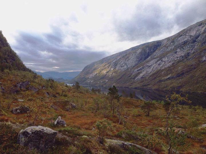 Trodalen. Foto - Kjellfrid Støylen
