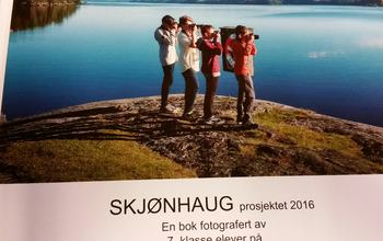 Skjønhaug-boka