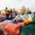 plastsøppel Fritt Fram
