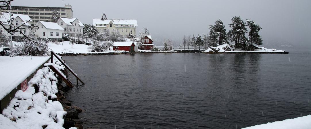 Snøfall i januar