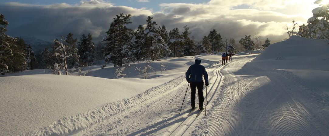 Godt vintervær, Skiløypa i Saurdal