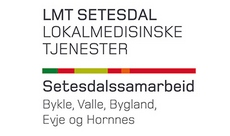Logo LMT - liten