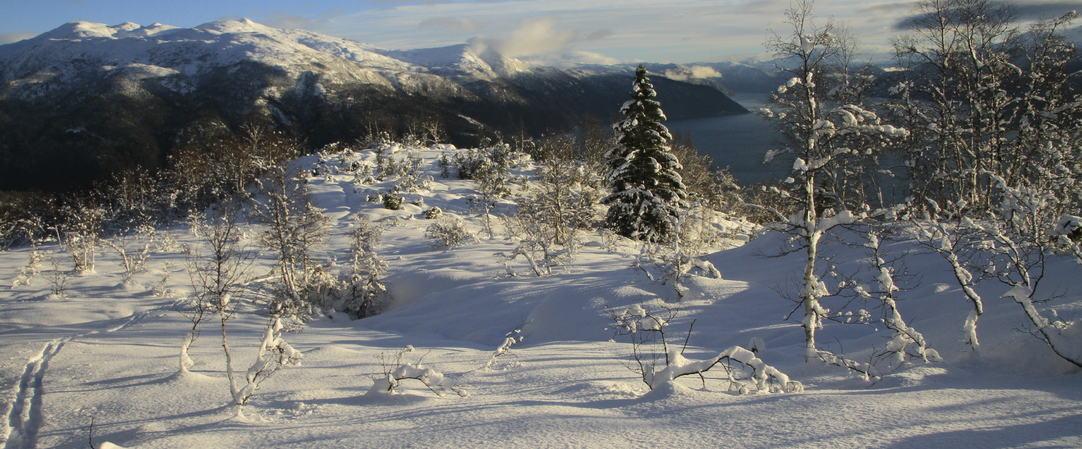 Vinterstemning frå Klukshaug, foto jh