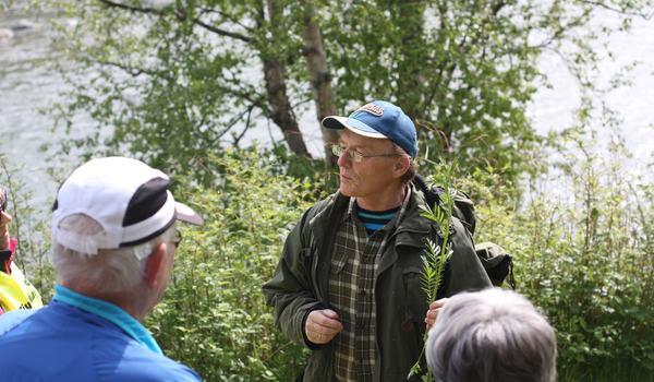 Knut Jentoft forteller om spiselige planter på ordførerturen til Kielva i 2016. Foto: Maja Sjöskog Kvalvik.