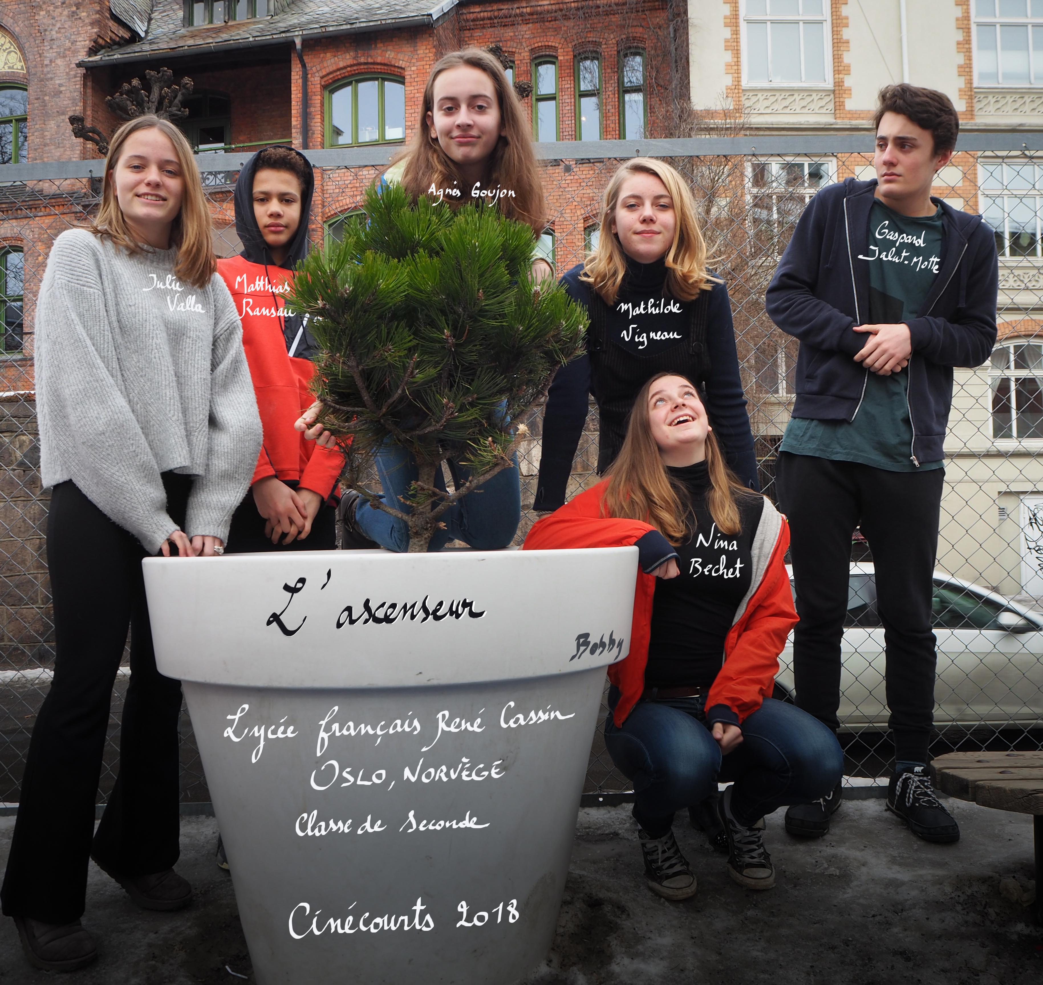 lycée français oslo norvège