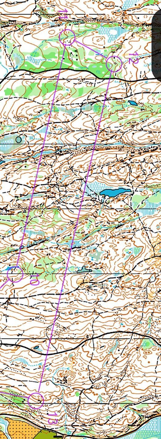 Utsnitt fra H19-løypa i Nydalten. Kart: Diverse osloklubber.