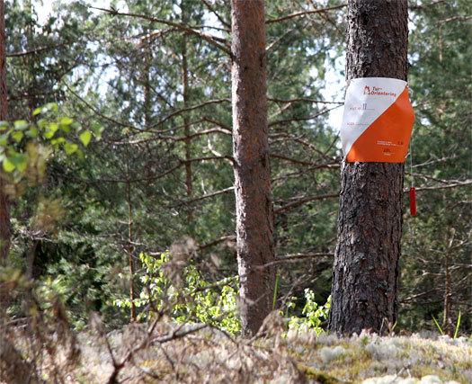 Turorienteringspost. Foto: Geir Nilsen/OPN.no.