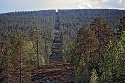 Norsk-russisk grense i Pasvik
