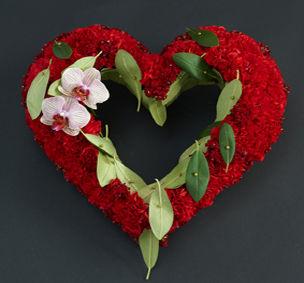 Hjerte[7]