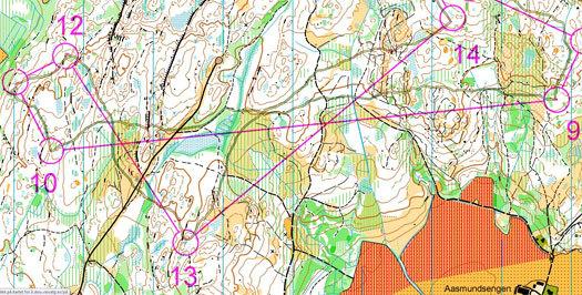 Utsnitt av Olav Johannes Deelstra sitt kart fra Norwegian Spring sitt SOLrenningen 2014.