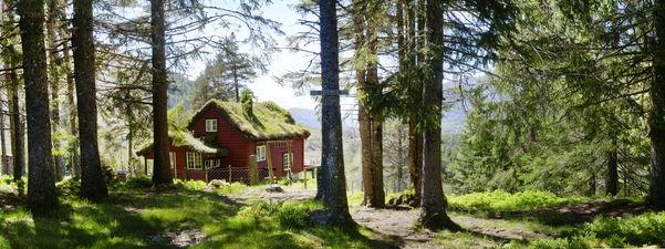 Ryggen. Ei lita raud hytte med torvtak i skogen. Foto: Lina Winge.