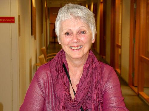 Emma Bjørnsen har 25 års erfaring med folkehelsearbeid i fylkeskommunen, der ho blant anna har jobba tett med kommunane, Høgskulen og Fylkesmannen. No er ho seniorrågjevar i Helse Førde. (Foto: Helse Førde)
