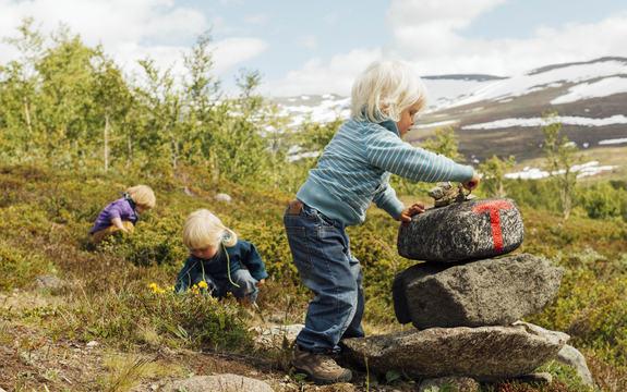 Foto som skal illustrere folkehelse. Det syner tre ungar på fjelltur. Den eine står og støttar seg til og legg steinar på ein liten varde, dei to andre plukkar bær i lyngen bak. Foto: Den norske turistforening/www.flickr.com