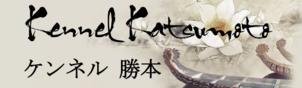 katsumotologo-2_302x88.png