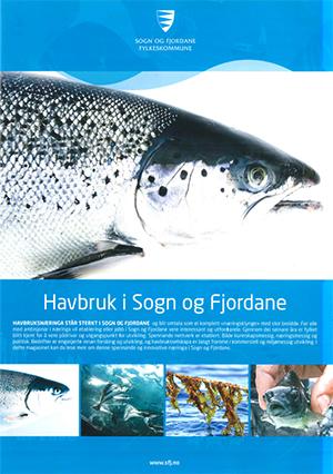 havbruk i sogn og fjordane.jpg