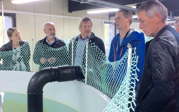 Kultiveringsanlegg Eco energi i Aurland
