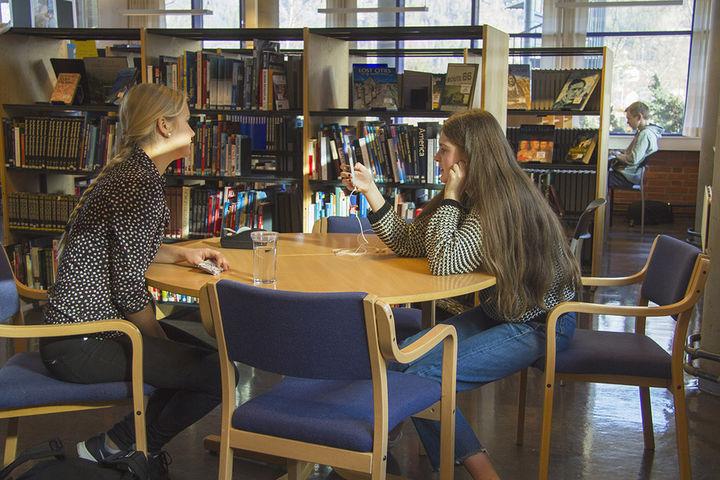 Fotograf: Sunniva Grimstad Hestenes. Elevar på biblioteket ved hafstad vgs