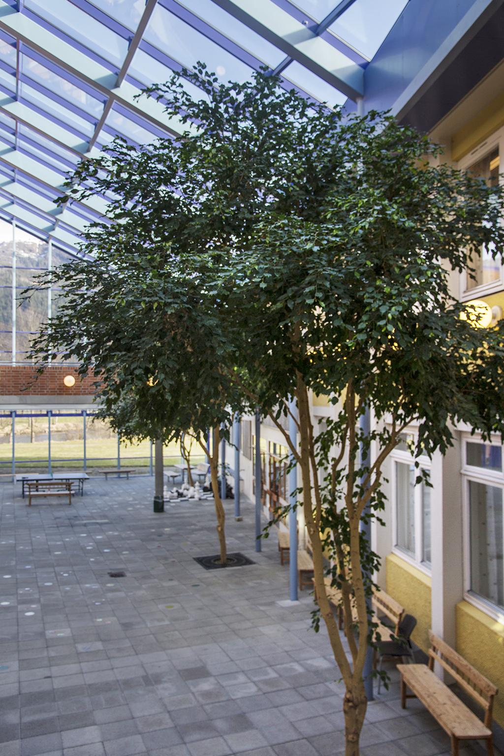 Glasgården ved Hafstad vgs - Elise Håvåg 2016.jpg