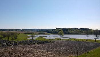 Hæra naturreservat