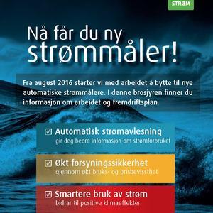 AMS smartstrømmåler_web side1
