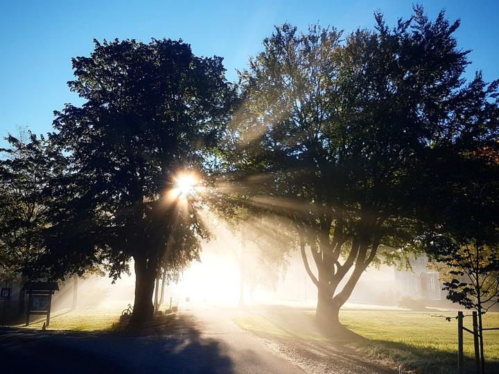 Mo i sol. Fotograf: Bjørn Frode Hopland