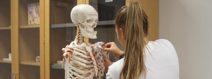 Bilete syner elev som lærer om kroppens oppbygnad