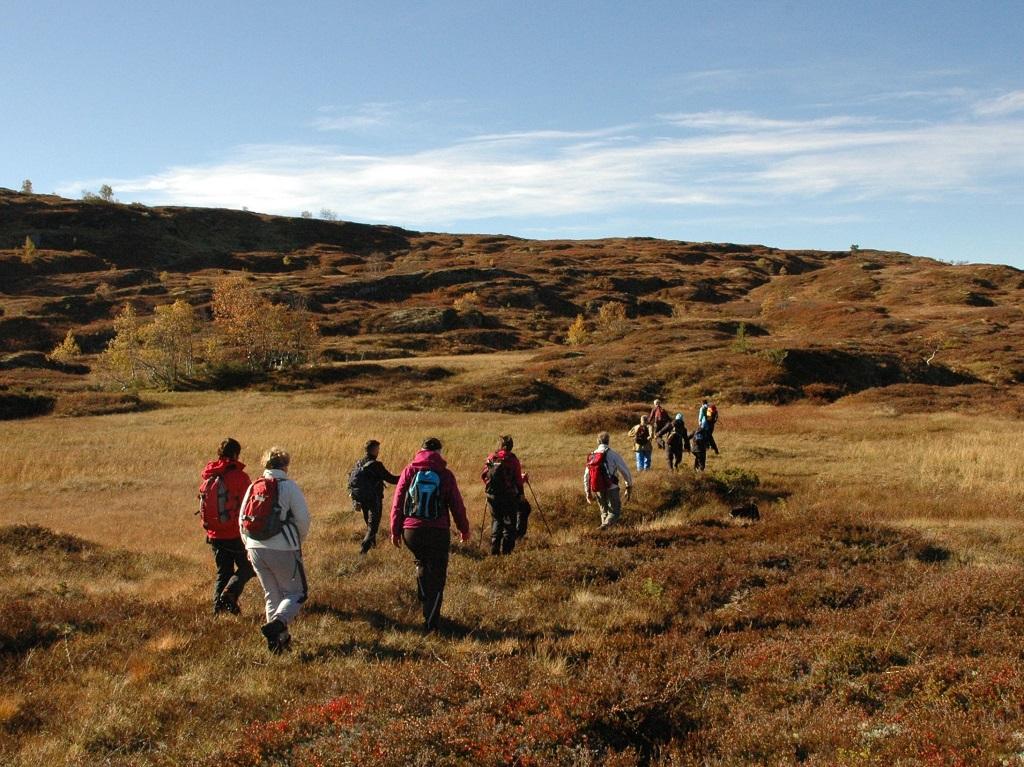 Ei gruppe mennesker er på hausttur i fjellet på Vangsnes.