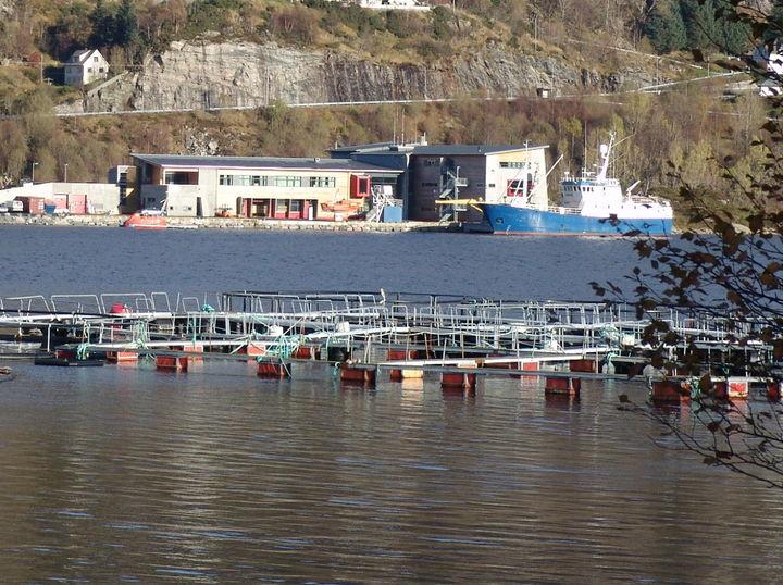 Maritim avdeling på Tennebø
