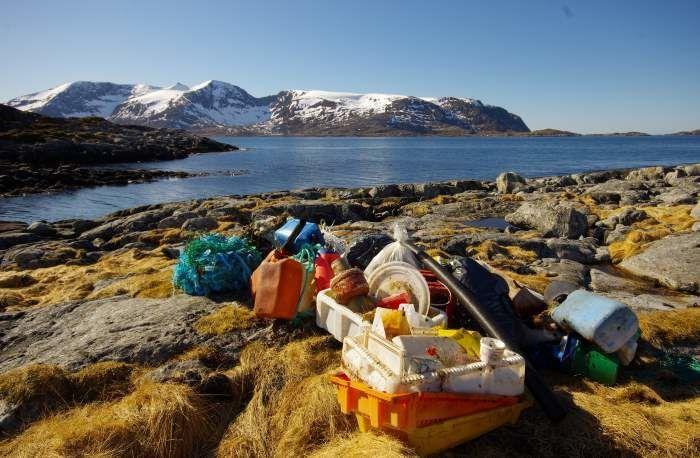 marint avfall Måsvær