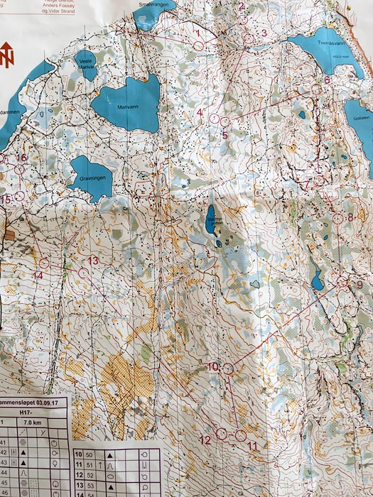 H17-løypa i Drammensløpet 2017. Kart: IF Sturla.