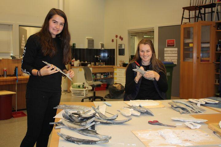To elevar lagar sild av silikon