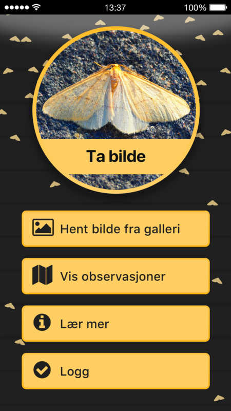 app malerjakt_450x800.png