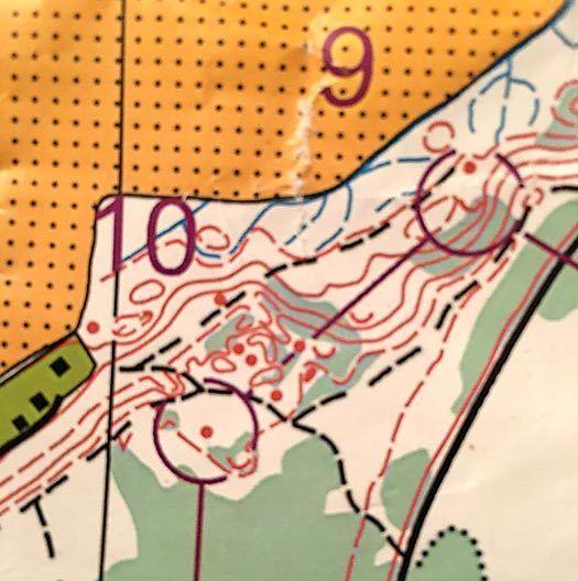 Nattugla. Kart: Ringerike Orienteringslag.
