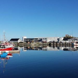 Torsvåg Havfiske