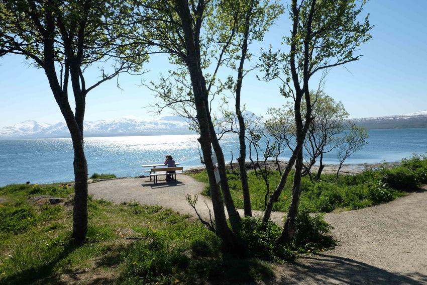 Sydspissen, Tromsøya. Et tilgjengelig friluftsområde for alle. Foto: Maja Kvalvik.