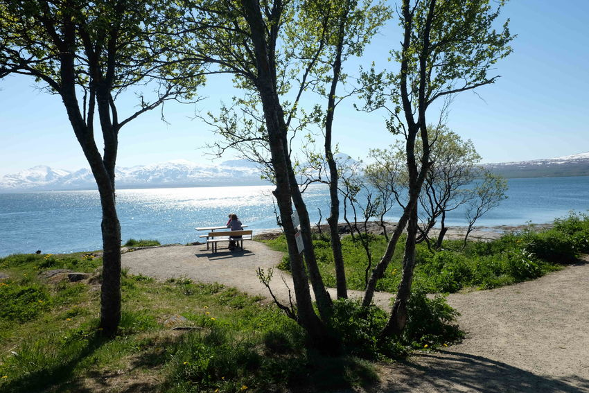 Sydspissen, Tromsøya. Et tilgjengelig friluftsområde for alle. Foto: Maja Sjöskog Kvalvik