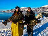 Dåfjord Havfiske halibut