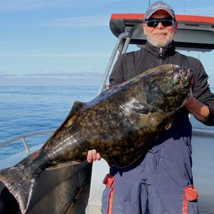 Mikkelvik Brygge fishing