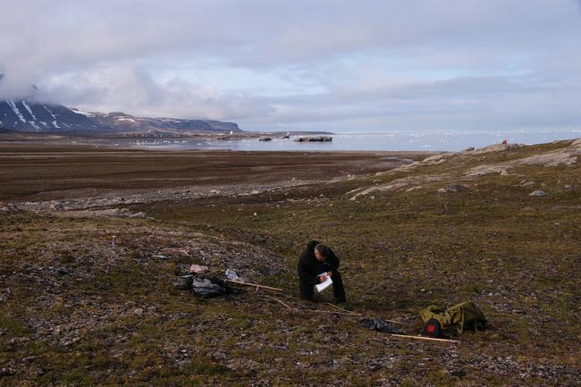 Trond Johnsen bilde av Bjerke med Kongsfjorden i bakgrunnen DSC03928[1].JPG